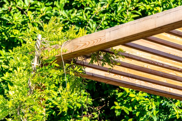 espaces_paysagers-jardin-strasbourg-pergola-bois1