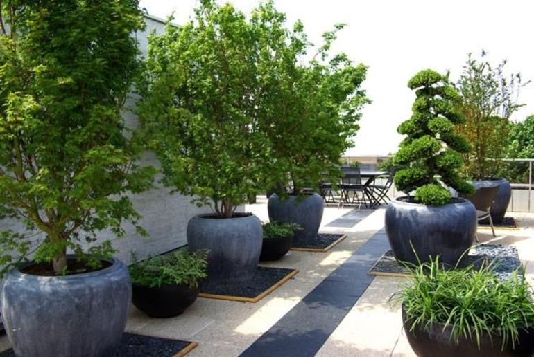 Amenager Ses Espaces Exterieurs Avec Des Plantes En Pot