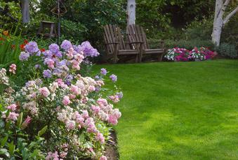 Pas de vacances estivales pour le jardin