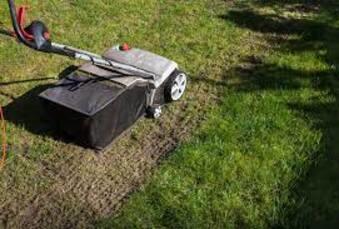 Scarification de la pelouse