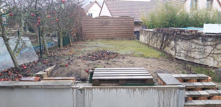 boersch-amenagement-jardin-avant