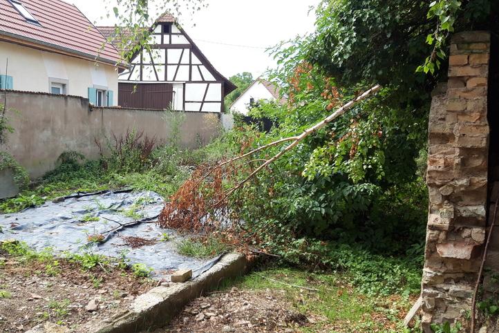 geispolsheim-amenagement-jardin-avant